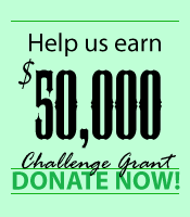 donate now challenge Echo Parenting & Education Awarded $50,000 Challenge Grant